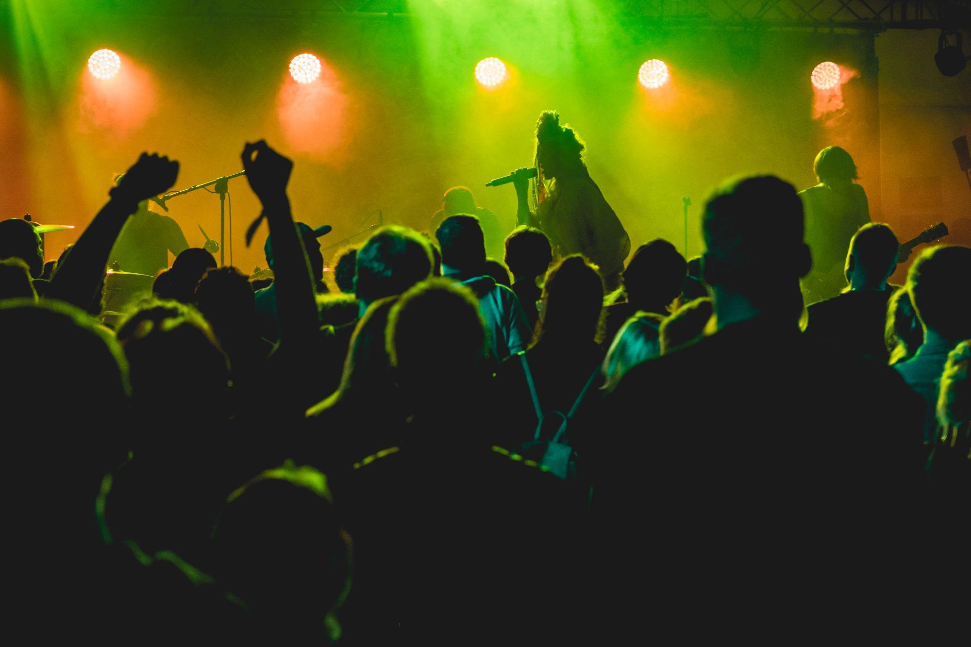 [Zdjęcie z perspektywy publiczności. Na scenie podświetlonej na zielono grający zespół na czele z charyzmatyczną wokalistką w dredach.]